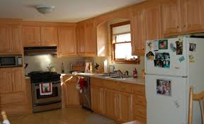 Professional Painting Kitchen Cabinets Cabinet Elegant Horrible Kitchen Cabinet Painting Cost Uk