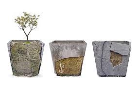 Concrete Planters Are Concrete Planters Sustainable Concrete Vs Resin
