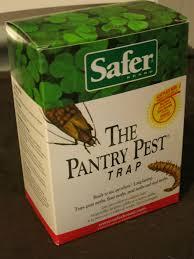 pantry moth strosity planning poor