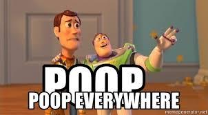 Woody Meme Generator - poop poop everywhere woody buzz everywhere meme generator
