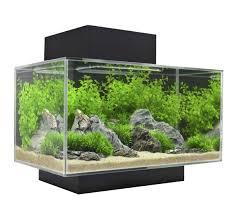 fish tank fish tank online shopping best tanks images on pinterest