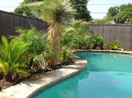 Tropical Backyard Designs Download Pool Landscaping Designs Pictures Garden Design