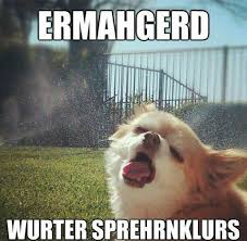 Cool Dog Meme - dog vs sprinklers the meta picture