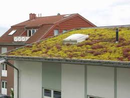 House Design Pictures Rooftop Green Roof Design And Rooftop Garden Improve Modern Houses In Many
