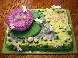lily pad w flower baby shower cake cakecentral com