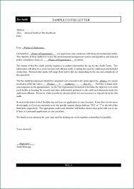 brand strategist resume sample cover letter for vp corporate