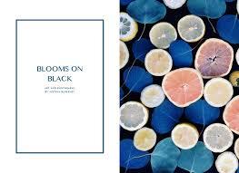 Justina Blakeney by Blooms On Black U2014 Justina Blakeney