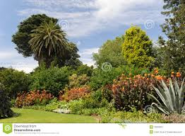 Melb Botanical Gardens by Melbourne Botanical Garden Stock Image Image 19260301