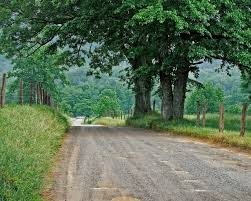 1280x1024 country road green trees fence desktop pc and mac wallpaper