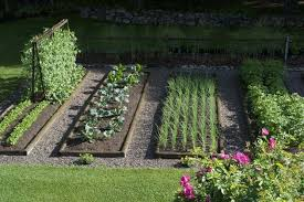 Small Vegetable Garden Ideas Pictures Dazzling Home Vegetable Garden Ideas Design With Small Home Designs