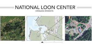 crosslake design ideas for loon center revealed pineandlakes