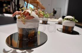 salon cuisine milan fuori salon design in milan photos and images european pressphoto