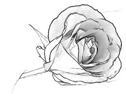 design flower rose drawing simple rose drawings in pencil easy pencil drawings of flowers rose