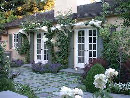 Patio Grow House What Kind Of Ivy Is Growing Up Wall Do You Know If It Will Grow