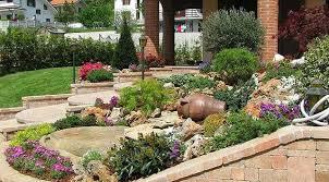giardini rocciosi in ombra piante da giardino ombra 7 bellissime piante crescono in