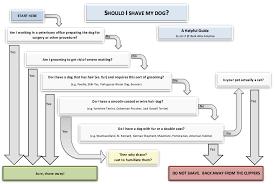 american eskimo dog growth chart shave down