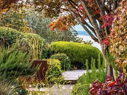 ways maximize autumn colors in your garden sunset