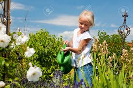 happy child watering flowers in the garden stock photo picture