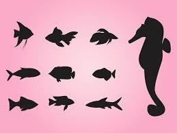 sea animals vector art u0026 graphics freevector com