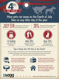 how to keep your pet safe on the 4th of july kaiku