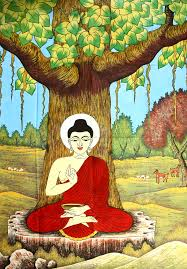 buddha meditating the bodhi tree buddha buddhism and
