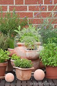 easy container herb gardening u2013 answerline