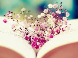 booknerd images book and flowers wallpaper hd wallpaper and