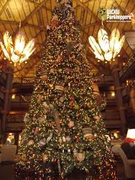 most beautiful tree astonishing toppers the