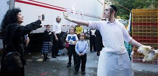 Hasidic Jew Meme - brooklyn animal rights activists battle hasidic jews over chicken