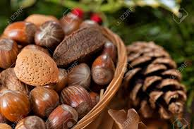 christmas nuts various christmas nuts in basket with green twigs decoration stock