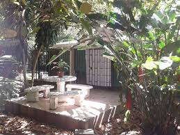 Affordable Small Homes 6 Affordable Small Homes In The Lake Arenal Area Of Costa Rica For