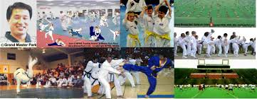 Master Park Martial Arts International World Sports and Martial