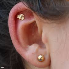 helix earing outer helix piercing
