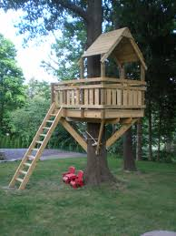 Tree Fort Ladder Gate Roof Finale Tree Houses Tree House - Backyard fort designs