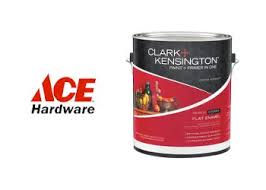 ace hardware paint sale car wash voucher
