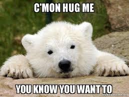 I Know You Want Me Meme - c mon hug me you know you want to popular opinion bear make a meme