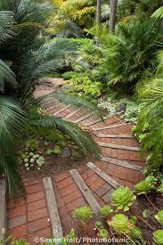 Wohnzimmer M El Segm Ler Die Besten 25 Außenkaktusgarten Ideen Auf Pinterest