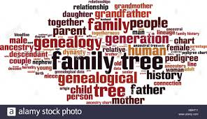100 family tree templates word family tree template word