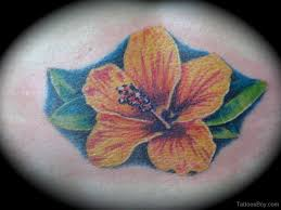 hibiscus tattoos tattoo designs tattoo pictures page 5