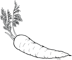 coloring pages fruits and vegetables coloring pages fruits and