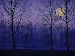 halloween background with purple image detail for free haunted forest wallpaper resolution