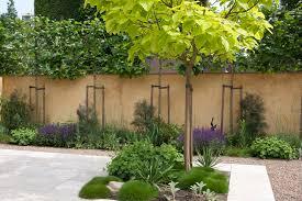 mediterraner garten garden and flowers pflanzen suchen und