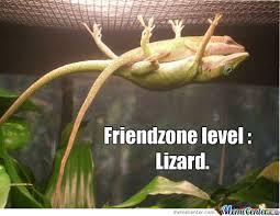 Lizard Meme - meme center largest creative humor community funny lizards
