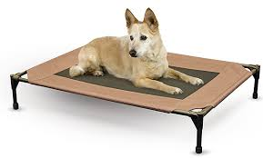 reviews of the best indestructible dog beds for extreme chewers