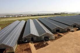 piastrelle fotovoltaiche serre fotovoltaiche pannelli fotovoltaici tipologie di serre