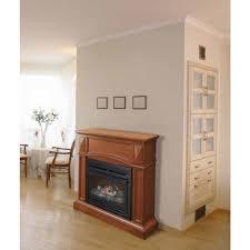 vent free gas fireplace claudiawang co