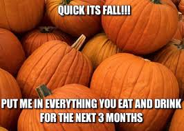 Fall Memes - fall memes to get you ready for the season