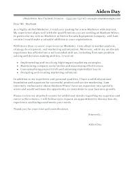 awesome babysitter cover letter pictures simple resume office