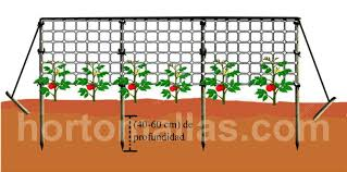 plant support cages stakes u0026 trellises hortomallas netting