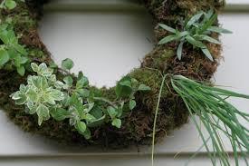 herb wreath live herb wreath swellkid